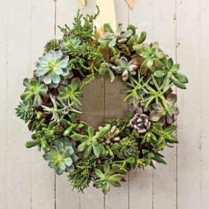 succulent-wreath-l